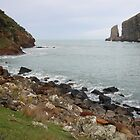Sleepy Bay - Banks Peninsular, New Zealand by Ruth Durose