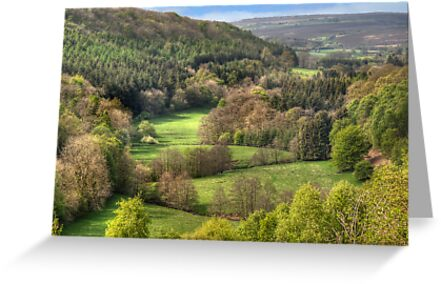 The View from Treacle Mansion by Colin Metcalf