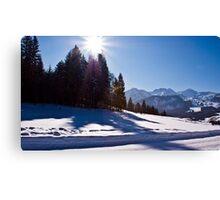 Snowscape II Canvas Print