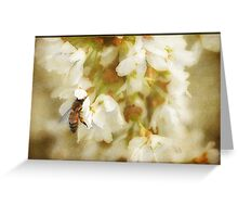 Spring Comes Softly Greeting Card