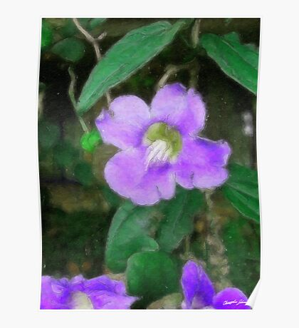 Pretty Vine Flowers 1 Watercolor Poster
