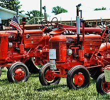 Big Reds by connie3107