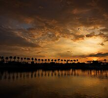Sunset Palms at Rainbow Harbor by Celeste Mookherjee