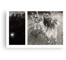 Two Dogs at Night Canvas Print