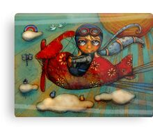 Little Red Plane Metal Print