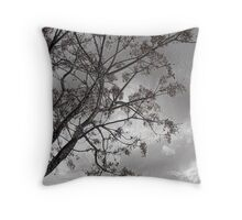 Grey Sky Throw Pillow