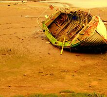 Beached boat by Tony Worrall