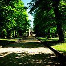 The Avenue - Nunhead Cemetery. by John Hare