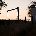 The Ole Cattle Station by Embella