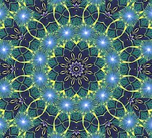 Dark Star Zodiac Central Tesselations  (UF0268) by barrowda