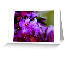 Soft Lilac Greeting Card