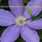 God Put You In My Life by DebbieCHayes