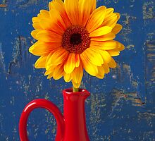 Yellow Mum In Red Pitcher by Garry Gay