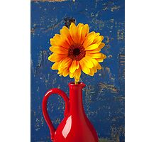 Yellow Mum In Red Pitcher Photographic Print