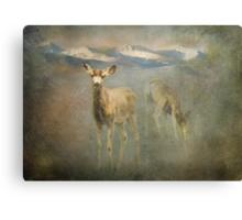 Lean Buck Canvas Print