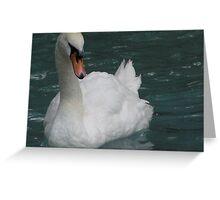 Las Vegas White Swan Greeting Card