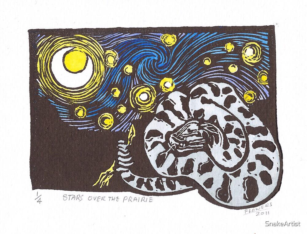 Stars over the Prairie by SnakeArtist