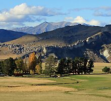 Farm at Castle Hill - South Island, New Zealand by Ruth Durose