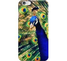 Feathered Finery iPhone Case/Skin