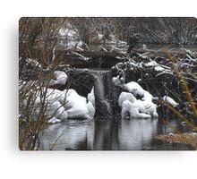 Beaver Dam Waterfall Canvas Print