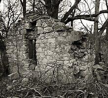 Stone Home by samseizert