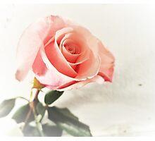 Single Love Photographic Print
