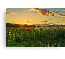 A Summer Dusk Canvas Print
