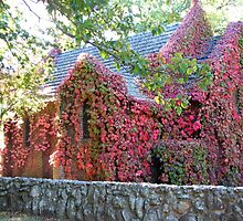Vine Covered Church at Gostwyck. by shortshooter-Al