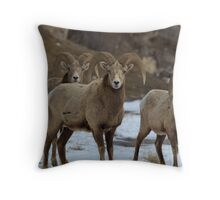 3 Rams Throw Pillow