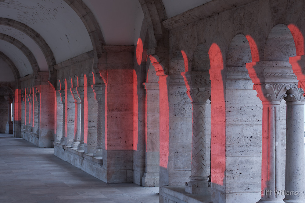 Pink Light hits Fishermans Bastion Budapest (viewed 100 times) by Cliff Williams