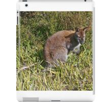 Bennetts Wallaby iPad Case/Skin