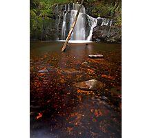 """Upper Lilydale Falls"" Photographic Print"