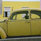 bo-kaap beetle by mellychan