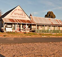 Great Weatern Store by Robin Young