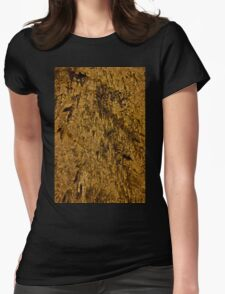 Carlsbad Caverns V Womens Fitted T-Shirt