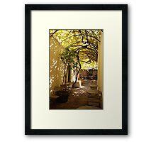 under the grape vine Framed Print