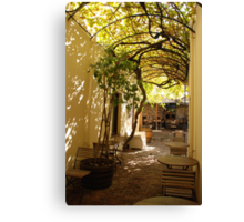 under the grape vine Canvas Print