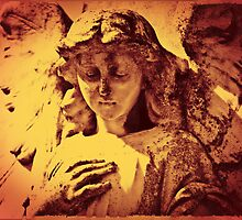 Angel by Selina Ryles
