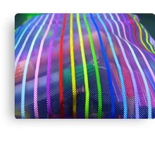 Colors In A Pouch Canvas Print