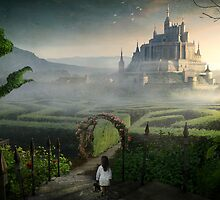 The Labyrinth by Rookwood Studio ©
