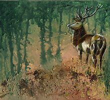 Stag in the morning mist by Maureen Sparling