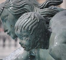 fountain series, trafalgar square by richard  webb