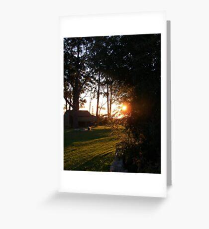 Sunglare #2 Greeting Card