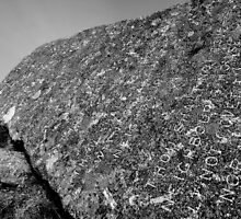 Dartmoor: The Ten Commandments Stone by Rob Parsons