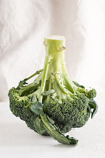 Broccoli by Ilva Beretta