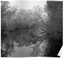 Foggy Morning Creekside - B&W Poster