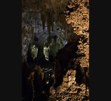Carlsbad Caverns X Unisex T-Shirt