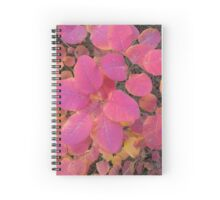 Colorful autumn leaves background Spiral Notebook