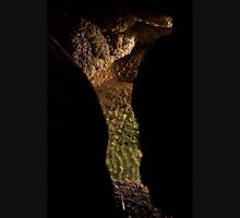Carlsbad Caverns XI Unisex T-Shirt