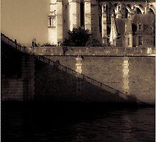 Notre Dame de Paris, fin avril 2011 by Revenant